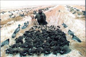 Saskatchewan Waterfowl Hunts