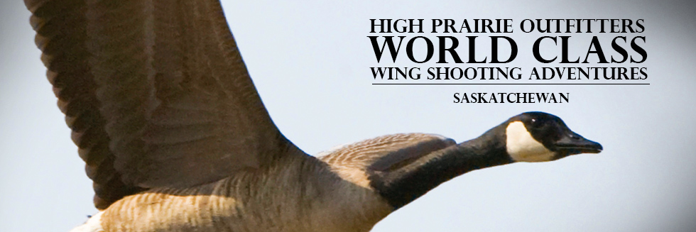 Saskatchewan Guided Waterfowl Hunts - High Prairie Outfitters